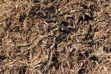 Cottonwood Mulch