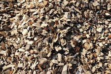 Cottonwood Chips
